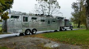 15-horse-trailer-(rear-view)