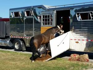 7.27.16 Truck 80.208 Delia
