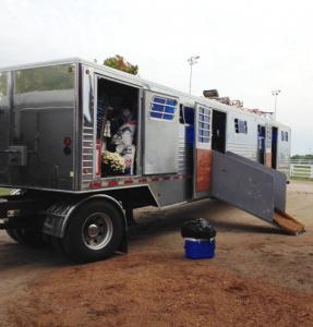 horse transportation and shipping from canada and usa 1